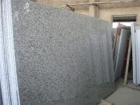 Big White Flower G439 Granite Polished Slab